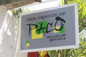 Art Galleries in Puerto Vallarta